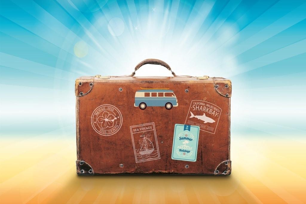 luggage, travel, sunlight
