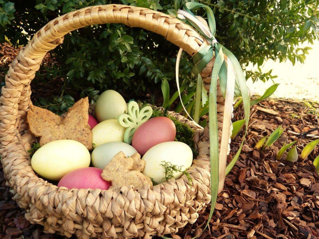 easter nest, easter eggs, colored