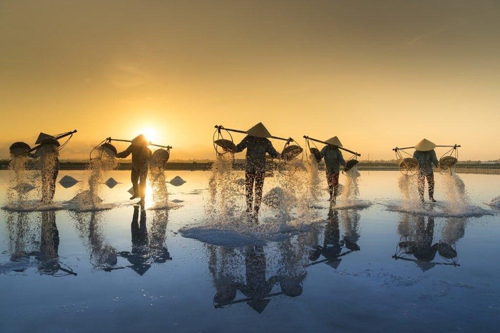 salt harvesting, vietnam, water